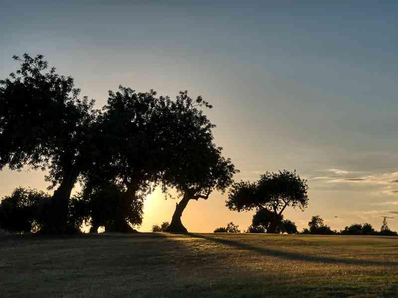 Golf-Tavira-Club-Gal-13